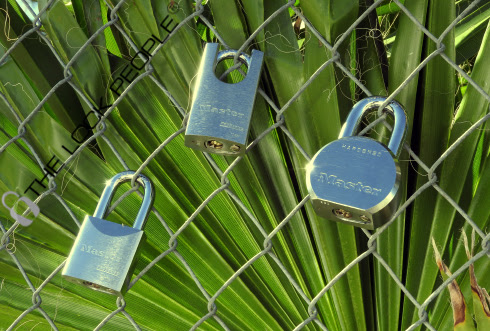 What is a ProSeries® High Security - Solid Steel Padlock?