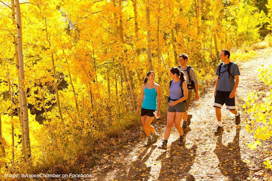 Best Time for Fall Colors in Snowmass