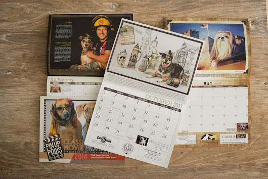 Supporting Your Furry Friends with the St. Augustine Humane Society Calendar