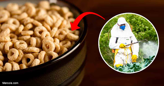 The Oat Products You've Been Eating Most Likely have Glyphosate Residue