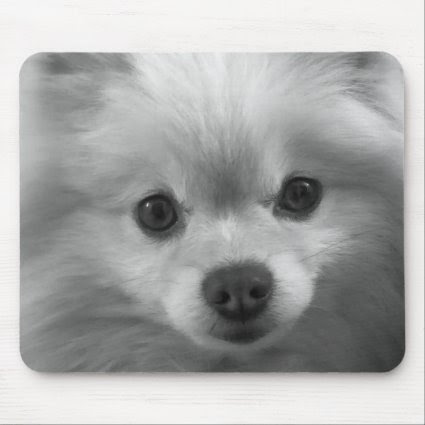 Adorably Cute Pomeranian Puppy Mousemat
