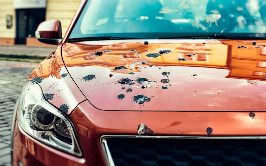 20 Hazards to the Finish On Your Vehicle's Paint – Riverside Automotive in Morgantown, West Virginia – Medium