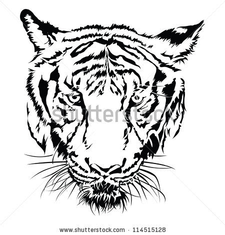 Tiger Face Black White Clipart Panda Free Clipart Images