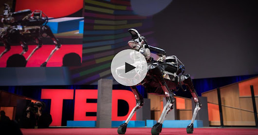 Meet Spot, the robot dog that can run, hop and open doors