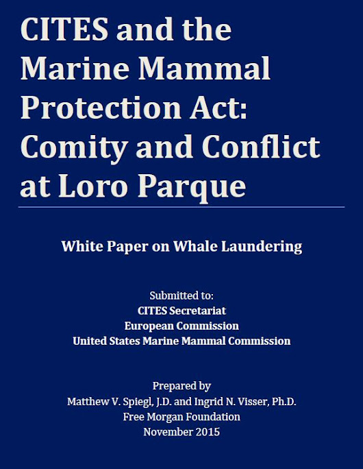 Spiegl & Visser (2015) White Paper (whale laundering) - Free Morgan Foundation