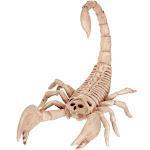 Skeleton Scorpion - 79502 - Bone - Standard