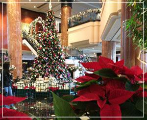館内はすっかりクリスマス。まだ11月上旬なのに、早いな!