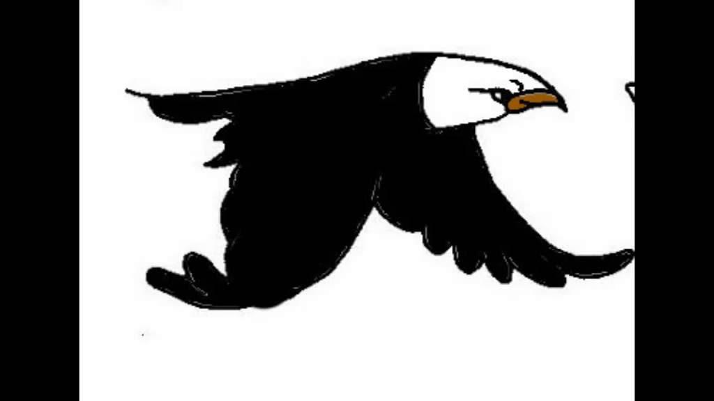 21+ Gambar Kartun Animasi Burung - Gambar Kartun