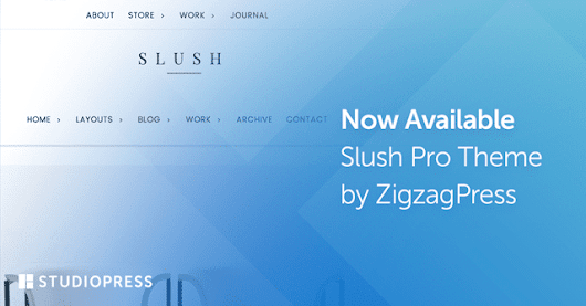 Slush Pro: a WordPress Theme for Creating a Well-Rounded Brand