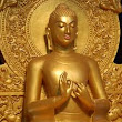 The Middle Path of Siddhartha Gautama | Philosophy Blog on Speakingtree.in
