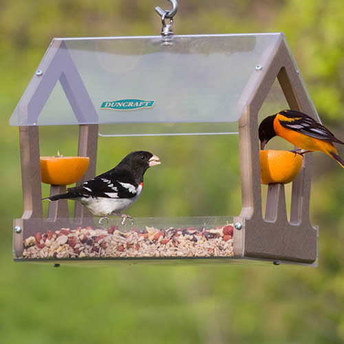 Eco-Strong Duo Feeder