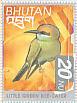 Green Bee-eaterMerops orientalis
