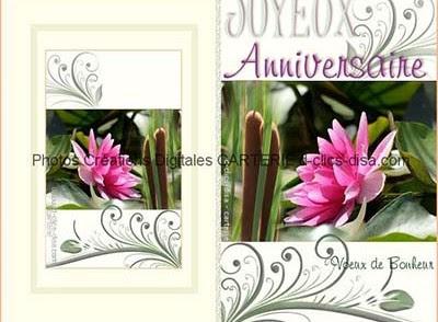 Carte D Anniversaire Gratuite A Imprimer Pour Adulte