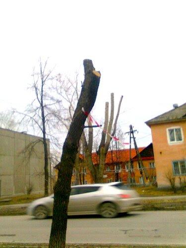 Против ветра