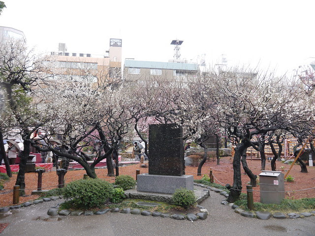 Tokyo : 10 Mar 2012