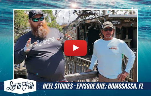 Watch Our New Fishing Show: Live to Fish Reel Stories!