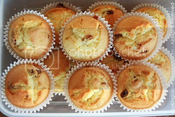 Butter Raisin Cupcake2