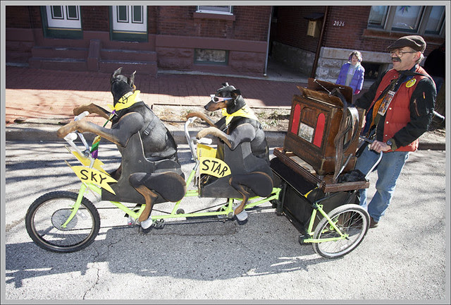 Soulard Dog Parade 2012-02-12 11