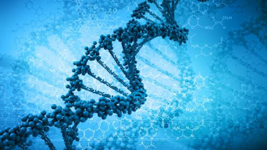 Scientists create first living organism containing artificial DNA