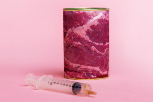 Make your own meat with open-source cells – no animals necessary