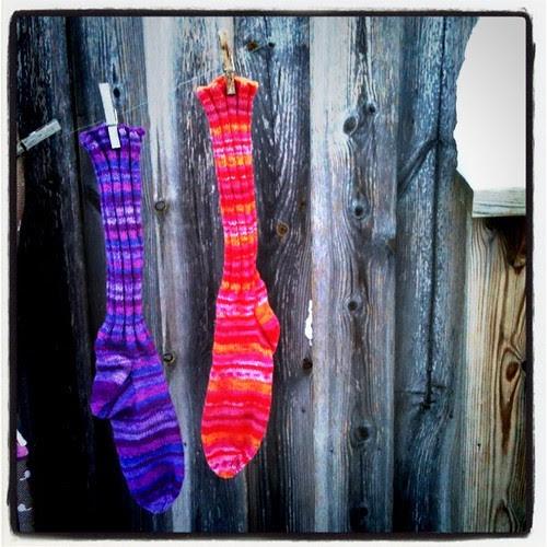 new magical socks #twitterjynta
