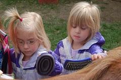 The girls brushing down Buttercup.