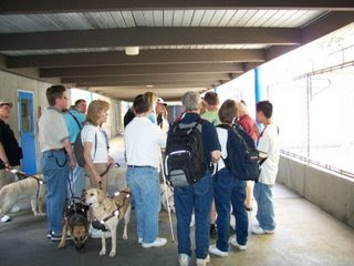 Way Fun group at Guide Dogs in San Rafael