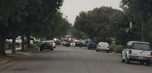 San Jose cops shoot man reportedly attacking his mother with ax