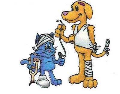 Wellness-Pet-insurance