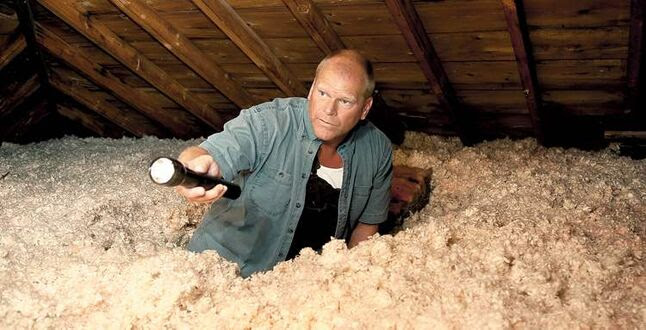 Checking your attic at least once a year is an important part of home maintenance.