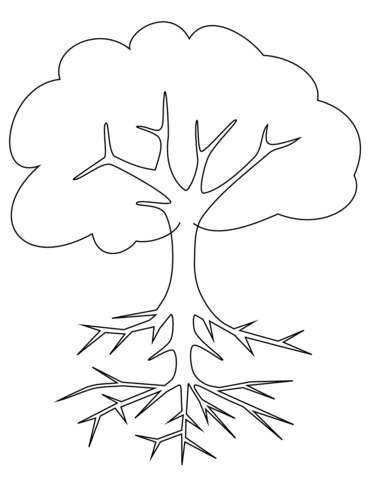 Dibujo De árbol Con Raices Para Colorear Dibujos Para Colorear