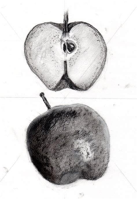 apple drawing  sgtpepper  deviantart