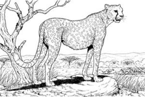 Best Of Realistic Animal Coloring Pages