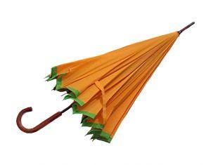 762664_paraguas_umbrella_