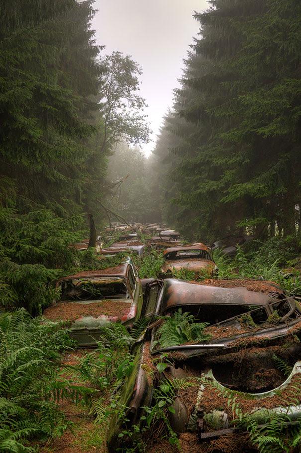 Chatillon-car-cemitério abandonado-carros-cemitério-Bélgica-4