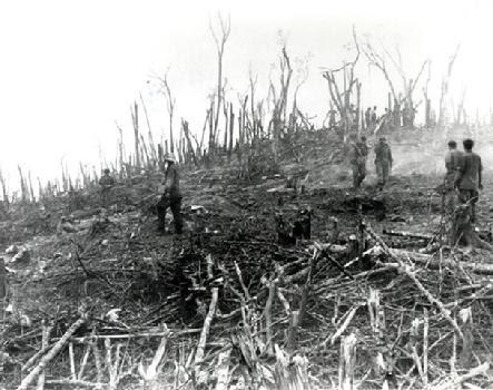 http://www.weststpaulantiques.com/images/443_hamburger-hill-destruction.jpg
