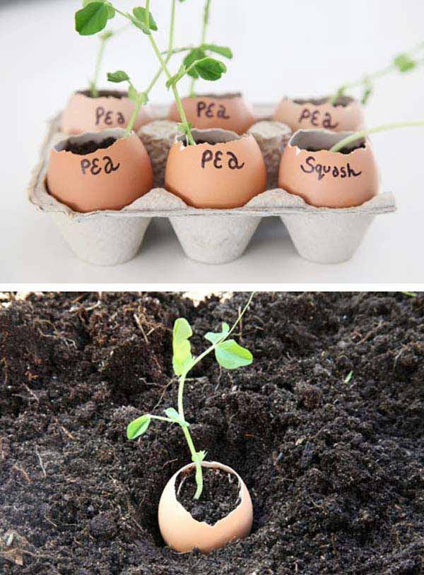 AD-Gardening-Tips-15