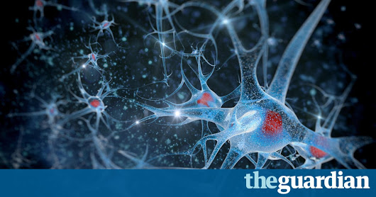 Memories of fear could be permanently erased, study shows | Science | The Guardian