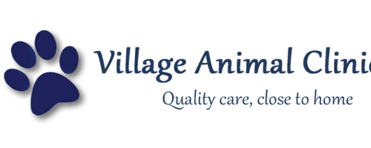 Events | Veterinarians Columbus | Village Animal Clinic