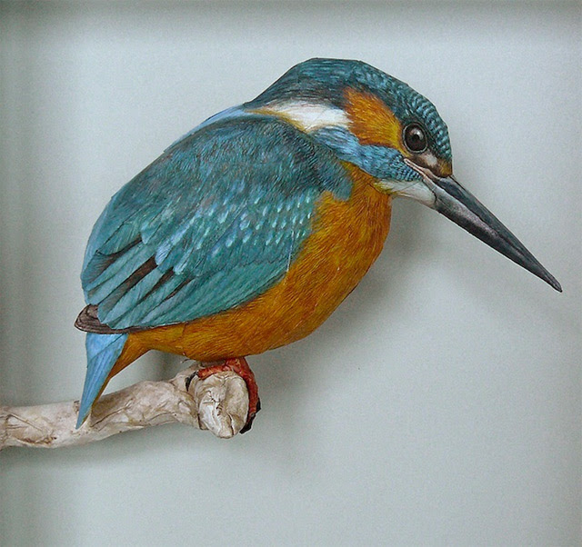 Realistic Birds Made from Paper and Watercolor Paint by Johan Scherft watercolor sculpture realism paper birds