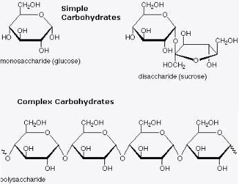 carbohydrate diagram