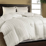 500 TC Damask Stripe Cotton Cover Duraloft Down Alternative Comforter White Full/Queen - King White