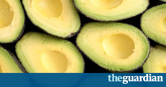 Avocado shortage fuels crime wave in New Zealand | World news | The Guardian