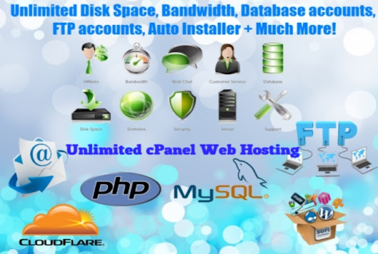will Unlimited cPanel Web Hosting - 1 Year for 7 (Seller: ) - SEO Clerks - Gig Clerk - Gig Clerk - Affordable SEO Marketplace
