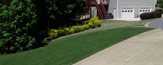 Fall and Winter Lawn Care Tips - Lawn Care Dallas Ga