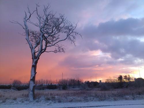 Wonderful winter by Milli.