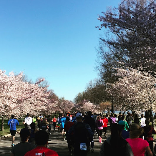 Review of the 2017 Cherry Blossom 10 Miler | The Casual Runner