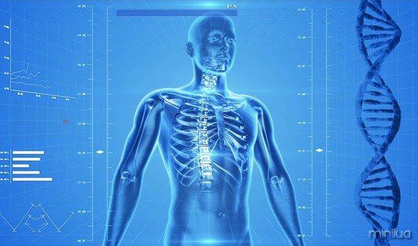 O corpo humano é realmente bioluminescente, o que significa que você produz luz! Infelizmente que a luz é muito fraca para você ver