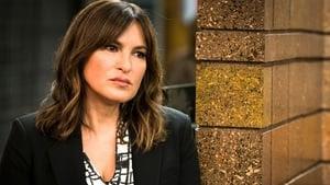 Law & Order: Special Victims Unit Season 19 : Info Wars