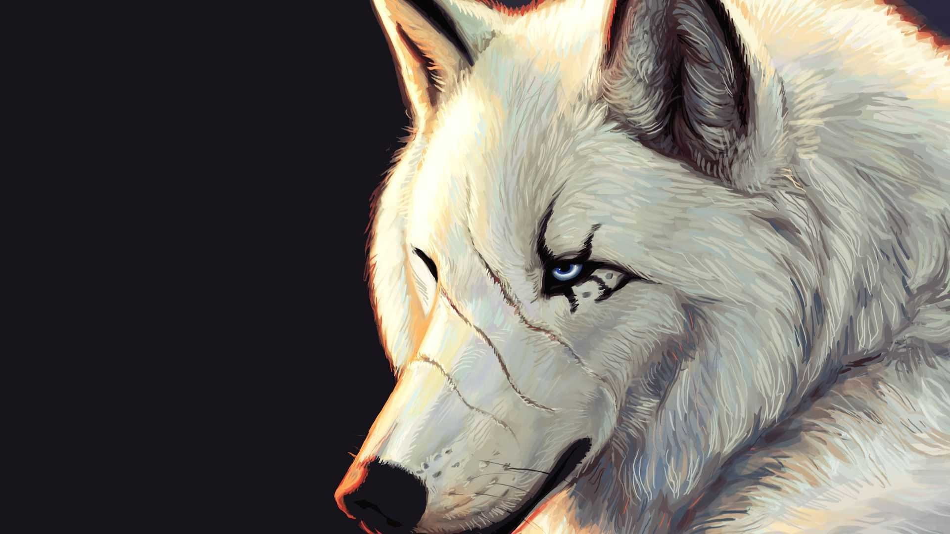 Wolves Desktop Wallpapers 73 Background Pictures